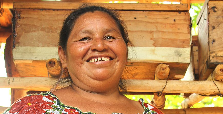 Alicia Canché Chac - legorretahernandez.com