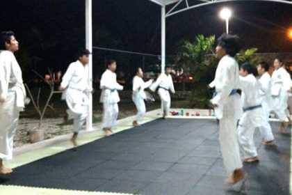 Karate Do - legorretahernandez.jpg