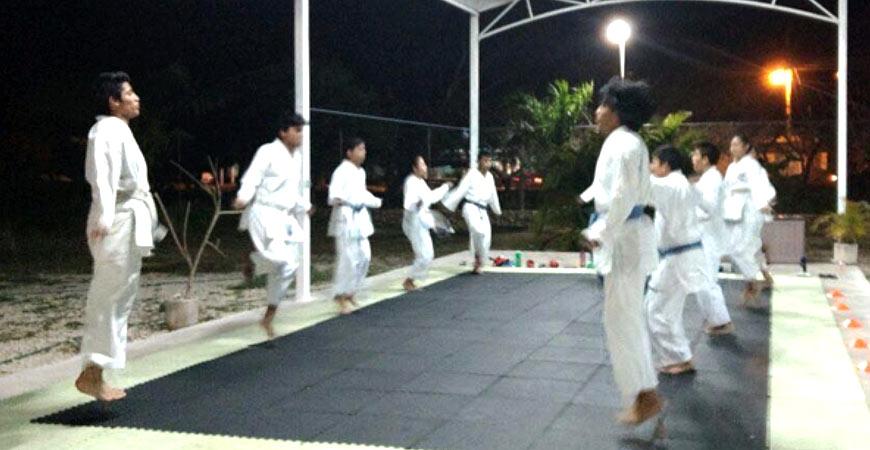 Karate Do - legorretahernandez.jpg